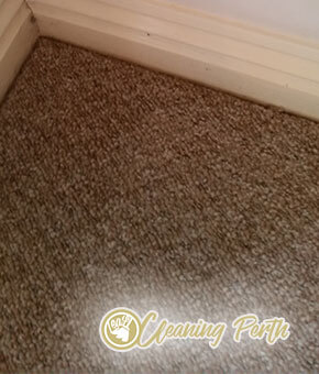 Carpet Cleaning Perth, 6000